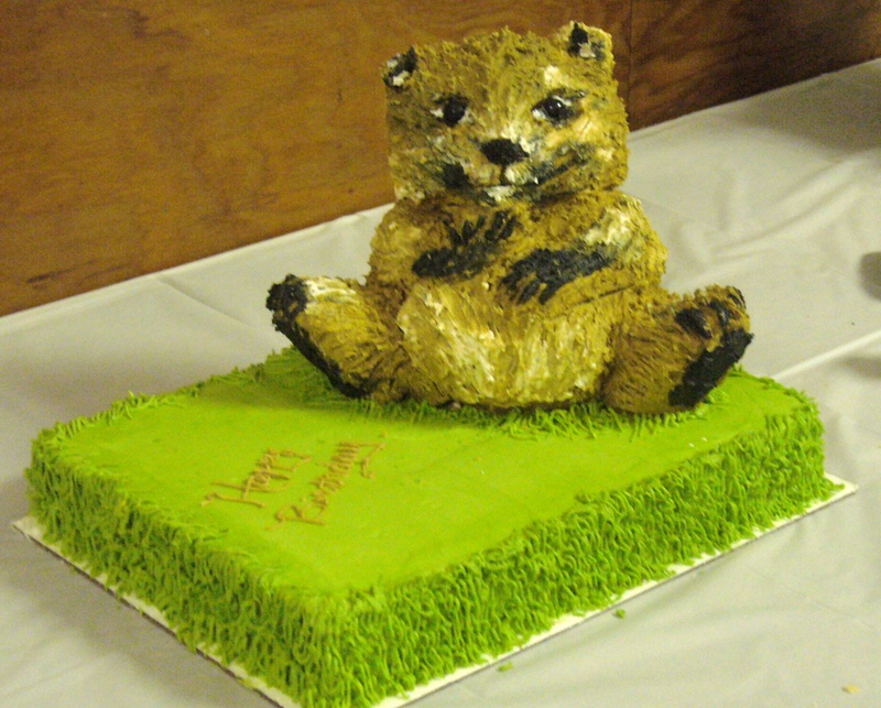 Cute first birthday cake and groundhog day cake in one!
